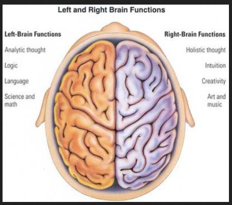 brain%20cole%20hall%202%20parts
